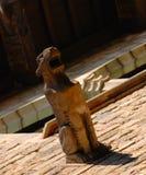 Gargoyle animale fotografie stock libere da diritti