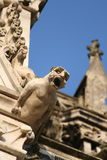Gargoyle on a cathedral. Gargoyle,Cathedral Notre-Dame, Amiens,Somme,Picardy region of France Stock Photos