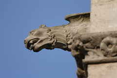 Gargoyle on Cathedral of Amiens. Gargoyle on cathedral Notre Dame of Amiens in Somme,Picardy region of France stock photo