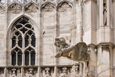 A Gargoyle in the cathedral of Milan Stock Images