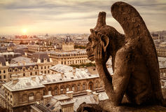Gargoyle of Cathedral of Notre Dame de Paris overlooking Paris. Chimera (gargoyle) of the Cathedral of Notre Dame de Paris overlooking Paris at sunset, France royalty free stock images