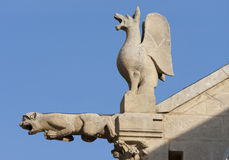 Gargoyle and chimera Royalty Free Stock Photos