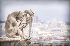 Gargoyle (chimera), stone demons, with Paris city on background. Stock Image