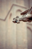 Gargoyle in a church of Bruges Royalty Free Stock Photos