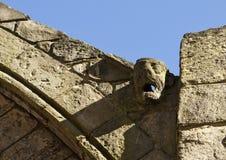 Gargoyle de la tromba marina en abadía Fotografía de archivo libre de regalías