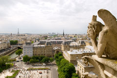 Gargoyle de Notre Dame, París Imagen de archivo