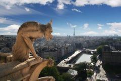 Gargoyle della cattedrale del Notre Dame Fotografia Stock
