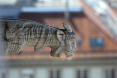 Gargoyle, detail on the facade of the Zagreb cathedral Stock Images