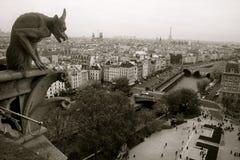Gargoyle do Notre Dame de Paris fotografia de stock