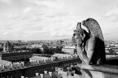 Gargoyle en la catedral de Notre Dame Foto de archivo libre de regalías