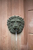 Gargoyle. Of a fountain, detail, close up stock photo