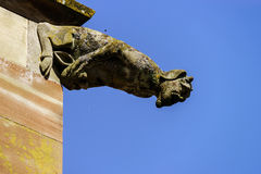 Gargoyle on a gothic cathedral, detail of a tower on blue sky ba Royalty Free Stock Photos