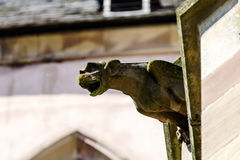Gargoyle on a gothic cathedral, detail of a tower on blue sky ba Stock Image