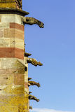 Gargoyle on a gothic cathedral, detail of a tower on blue sky ba Stock Photos