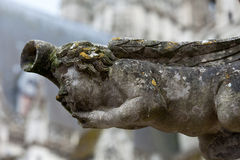 Gargoyle on Gothic cathedral of Saint Gatien in Tours Stock Photos
