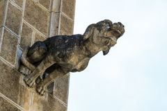 Gargoyle (gothic church architectural detail) Royalty Free Stock Images