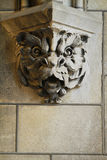 Gargoyle head Royalty Free Stock Photos