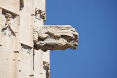 Gargoyle at La Lonja monument Royalty Free Stock Photos