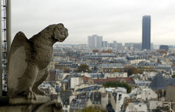 Gargoyle and Montparnasse tour Royalty Free Stock Images