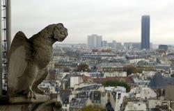 Gargoyle and Montparnasse tour. Paris`s view from the top of Notre Dame de Paris. Gargoyle and Montparnasse tour (tower Royalty Free Stock Images