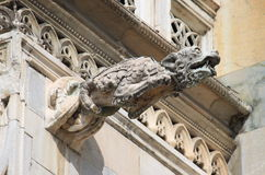 Gargoyle in Monza cathedral, Italy Stock Photos
