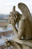 Gargoyle na catedral de Notre Dame Fotos de Stock