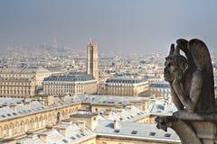 Gargoyle of Notre Dame Stock Images