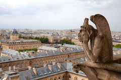 Gargoyle of the Notre Dame cathedral Stock Photo
