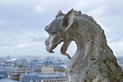 Gargoyle of Notre Dame Cathedral Stock Photos