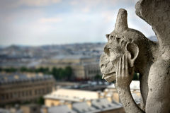 Gargoyle on Notre Dame Cathedral Stock Images