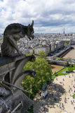 Gargoyle at Notre Dame de Paris Royalty Free Stock Photography