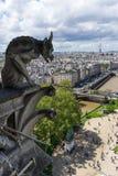 Gargoyle at Notre Dame de Paris. France Royalty Free Stock Photography