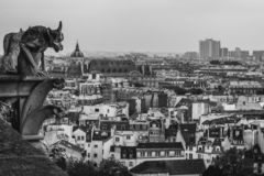 Gargoyle of Notre Dame de Paris, look down from the roof of the cathedral. Black and white photo. stock images
