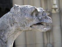 Gargoyle at Notre Dame de Paris Stock Images