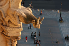Gargoyle of Notre Dame looking down the street Royalty Free Stock Photos