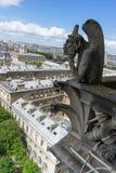 Gargoyle at Notre Dame de Paris. France Stock Image