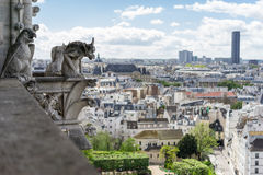 Gargoyle at Notre Dame de Paris Royalty Free Stock Photo