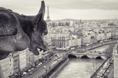 Gargoyle of Notre-Dame. Top view of Paris. Monochrome photo Royalty Free Stock Images