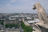 Gargoyle Notre Damme of Paris. Notre Damme Paris Cathedral France Royalty Free Stock Image