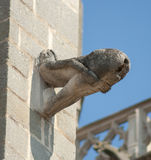 Gargoyle obscene Royalty Free Stock Photos