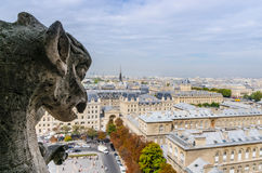 Gargoyle observing Stock Photo