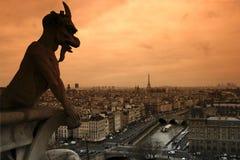 gargoyle- och seineflod i paris Arkivfoto