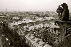 Gargoyle Of Notre Dame De Paris Stock Image