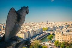 Gargoyle på den Notre Dame domkyrkan Arkivfoton
