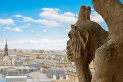 Gargoyle på den Notre Dame domkyrkan, Frankrike Arkivfoto