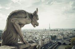 gargoyle panorama- paris Arkivfoto