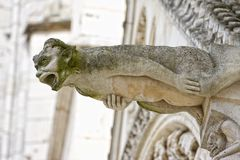gargoyle poitiers Франции Стоковое фото RF