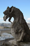 Gargoyle on the roof of Notre-Dame Royalty Free Stock Photos