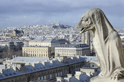 Gargoyle on the roof of Notre-Dame, Paris cathedral Stock Photos