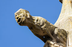 Gargoyle sculture on medieval cathedral. Mirepoix. Stock Photography